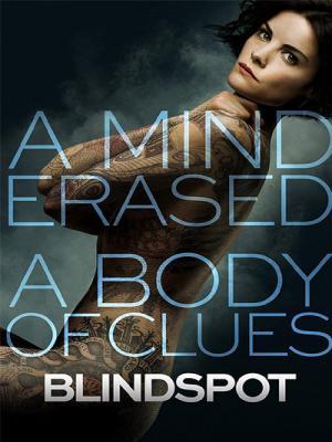 Blindspot Season 01