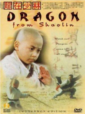 Rồng Tại Thiếu Lâm